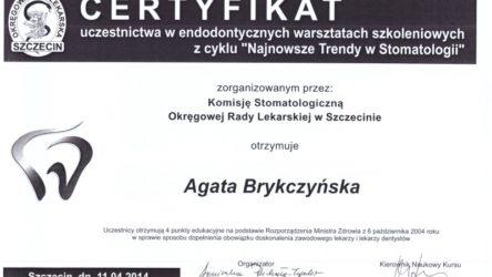 dr Agata Brykczyńska 7