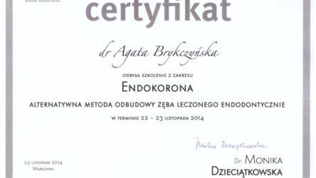 dr Agata Brykczyńska 3