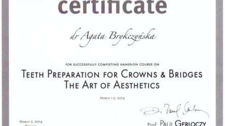 dr Agata Brykczyńska 2