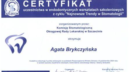 dr Agata Brykczyńska 4