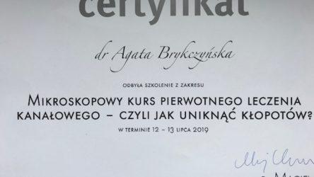 dr Agata Brykczyńska 18